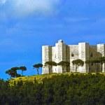 Castel del Monte, famous castle from Frederic II in the Terra di — Stock Photo