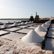 Stock Photo: Salt piles on a saline exploration