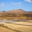 Stock Photo: Saline from Janubio, Lanzarote, Spain
