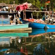 Huts and colorful fisherboats at the mangrove everglades in a s — Stock Photo #5619966