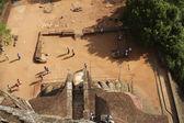 Roccia di leoni in palazzo vecchio a sigiriya — Foto Stock
