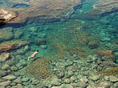 Diving in a natural basin in the rocks coastline of Lanza — Stock Photo