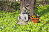 Stone buddha in front of a cherry tree — Stock Photo