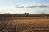 Freshly plowed acre in beautiful light — Stock Photo