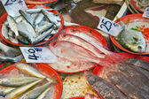 Fresh fish at the market — Stock Photo
