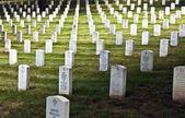 Arlington ulusal mezarlığı'mezar taşı — Stok fotoğraf
