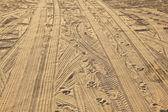 浜の足跡 — ストック写真