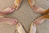 Feet of family at the beach — Stock Photo