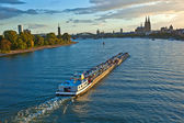 Freight ship on river Rhine by Cologne in Germany — Stock Photo