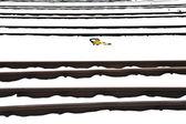 Snowbound rails in winter — Stock Photo