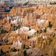 Unique and colorful hoodoo rock formations in the Bryce Canyon — Stock Photo #5636176