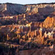 Unique and colorful hoodoo rock formations in the Bryce Canyon — Stock Photo #5636186