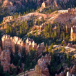 Unique and colorful hoodoo rock formations in the Bryce Canyon — Stock Photo #5636194