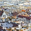 View over Vienna in snow — Stockfoto