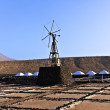 Salt refinery, Saline from Janubio, Lanzarote — Stock Photo