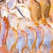 Whole fresh fishes are offered in the fish market in asia — Stock Photo