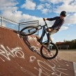 Stock Photo: Young boy with dirtbike in halfpipe