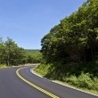 Beautiful scenic country road curves through Shenandoah Nationa — Stock Photo #5667541