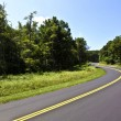 Beautiful scenic country road curves through Shenandoah Nationa — Stockfoto