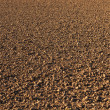Freshly ploughed acre — Stock Photo #5668513