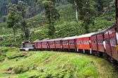 Riding by train the scenic mountain track from Nuwarelia to Colombo — Stock Photo