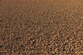 新耕的英亩 — 图库照片