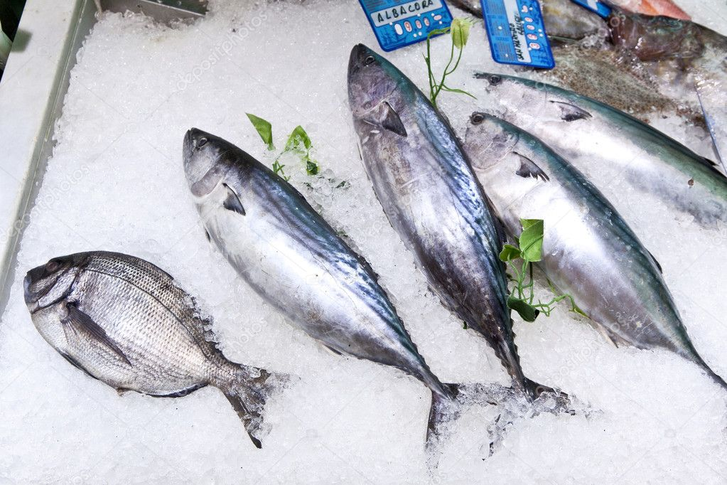 Fresh fish on ice for selling at the market — Stock Photo ...