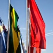 Flags — Stock Photo