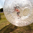 Child has a lot of fun in the Zorbing Ball — Stock Photo