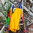 Buddha covered by roots in temple area Wat Phra Si Sanphet, Roya - Stock Photo