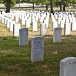 Headstones at the Arlington national Cemetery - Stock Photo