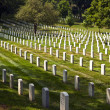 Headstones at the Arlington national Cemetery — Stock Photo #5680624