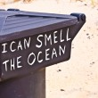Slogan I can smell the ocean on a garbage can at the beach — Stock fotografie