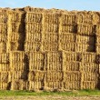 Stock Photo: Bale of straw in automn in intensive colors