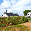 Farm house with field and silo — Stock Photo #5688905