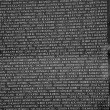 Names of Vietnam war casualties on Vietnam War Veterans Memorial — Photo