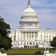 Stock Photo: The Capitol in Washington