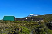 Mount Kilimanjaro, the highest mountain in Africa (5892m), seen — Foto de Stock