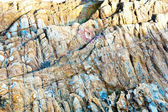 Beautiful stones at the beach with interesting harmonic structur — Stock Photo
