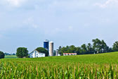 Farm house with field and silo — Stock Photo