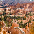 Beautiful landscape in Bryce Canyon with magnificent Stone forma — Stock Photo #5693857