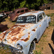Junk yard with old beautiful oldtimers - Photo
