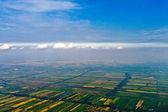 Antenn av risfält — Stockfoto