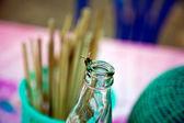 Camina sobre el cuello de botella para conseguir algo dulce de azúcar de una mosca — Foto de Stock