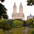 Central park in New York City Manhattan with trees and skyscrape — Stock Photo