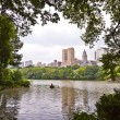 Central park in New York City Manhattan with trees and skyscrape - Stock Photo