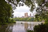 Central park a new york city manhattan con alberi e skyscrape — Foto Stock