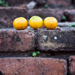 Oranges on old bricks of famous temple area Wat Phra Si Sanphet - Stock Photo