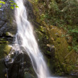 Waterfall at the small river Cascade Creek — Stock Photo #5778421