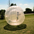 Child has a lot of fun in the Zorbing Ball — Stock Photo #5797891